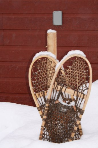 Snow_Shoe_Heart_by_misstaraleexo